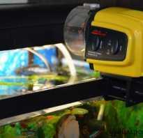 Автокормушки для рыб в аквариуме