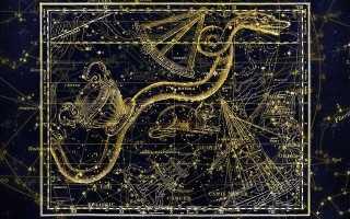 Год змеи жить