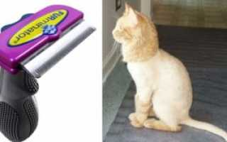 Фурминатор для кошек видео