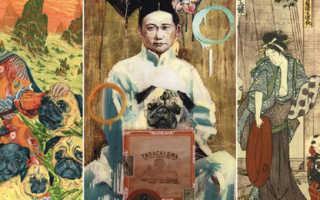 Мопсы в китае