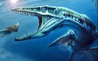 Кто сильнее акула или динозавр