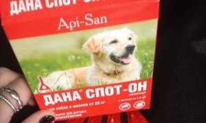 Дана ультра капли для собак инструкция
