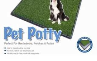 Многоразовый туалет для собак