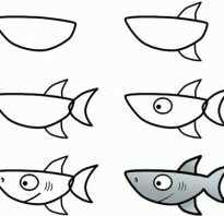 Акулья пасть рисунок