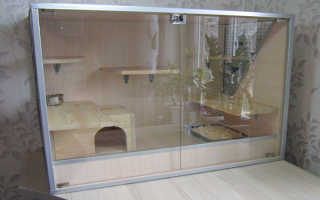 Изготовление витрин для шиншилл