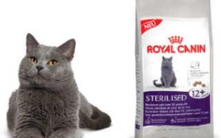 Роял канин для кошек виды