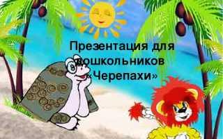 Морская черепаха описание для детей